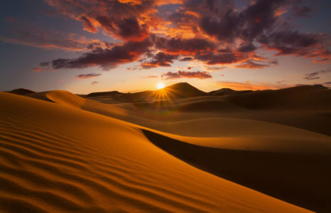 20 Dusty Desert Facts for Kids